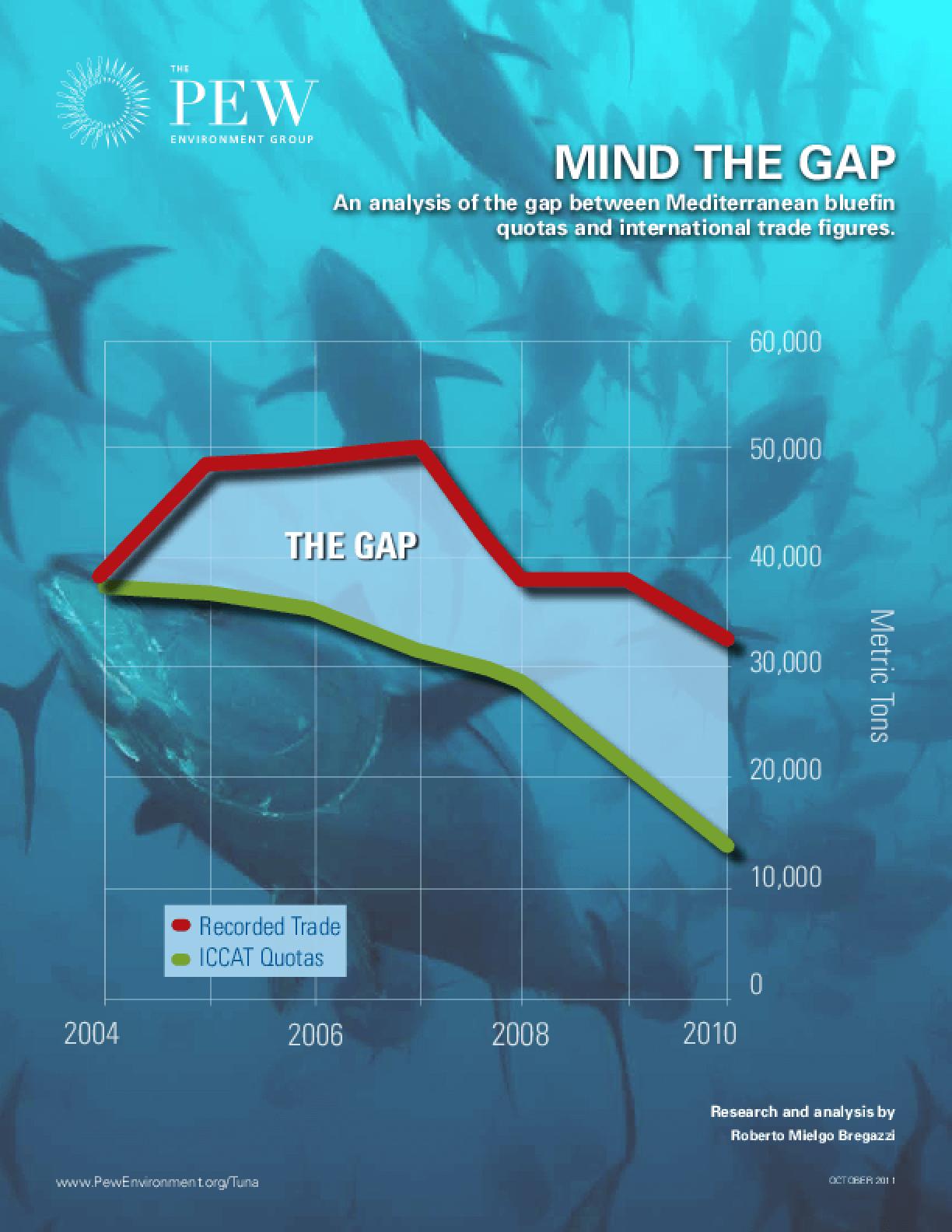 Mind the Gap: An Analysis of the Mediterranean Bluefin Trade