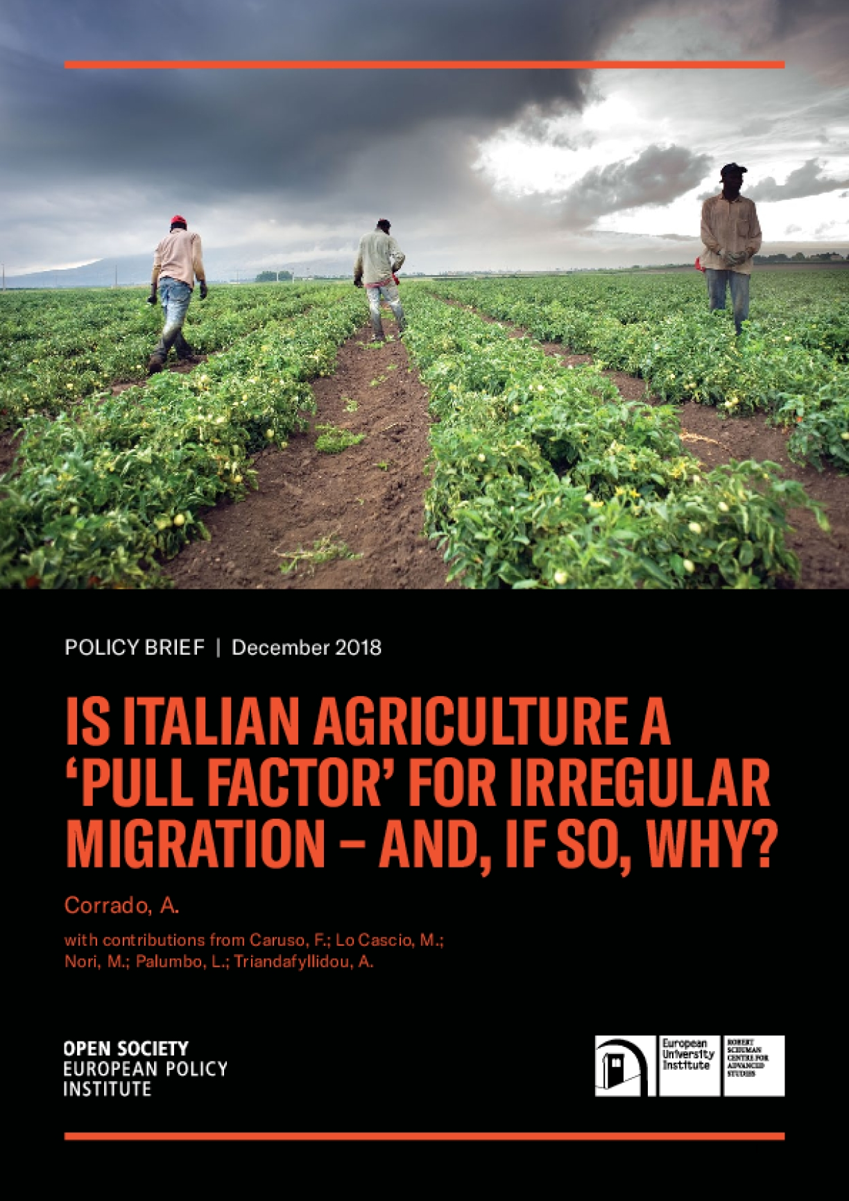 """Policy Brief: Is Italian Agriculture a """"Pull Factor"""" for Irregular Migration -- And, If So, Why?"""