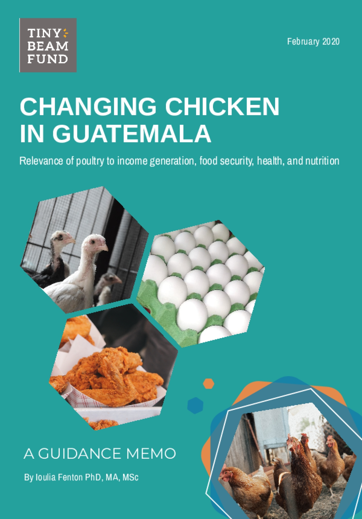 Changing chicken in Guatemala: Relevance of poultry to income generation, food security, health, and nutrition