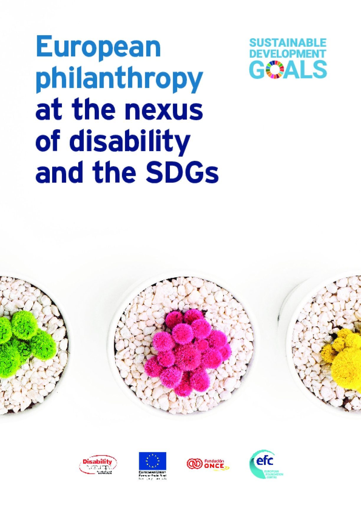 European Philanthropy at the Nexus of Disability and the SDGs